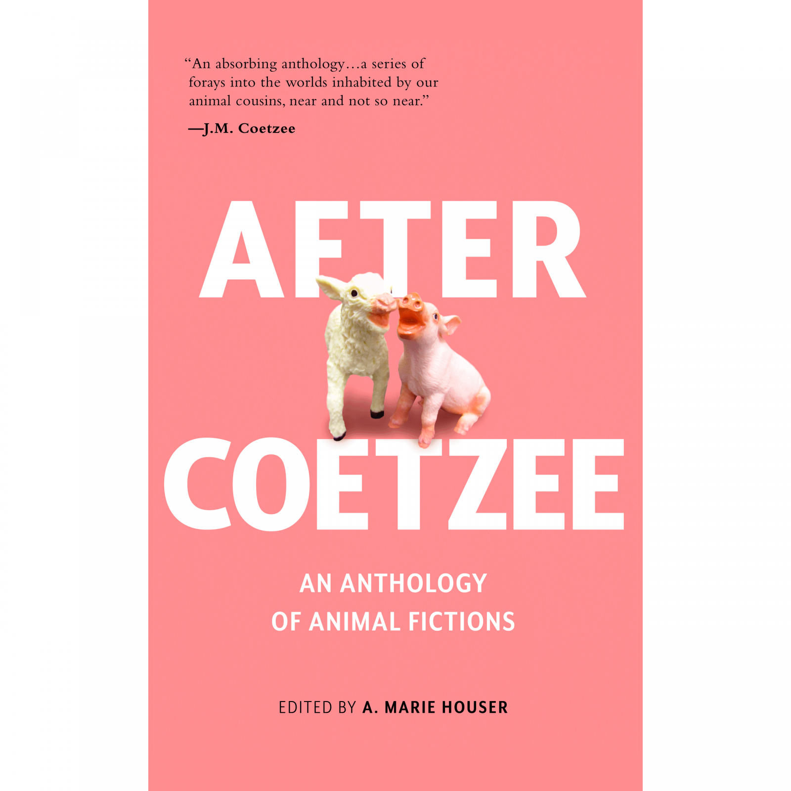 After Coetzee Paperback Product Image
